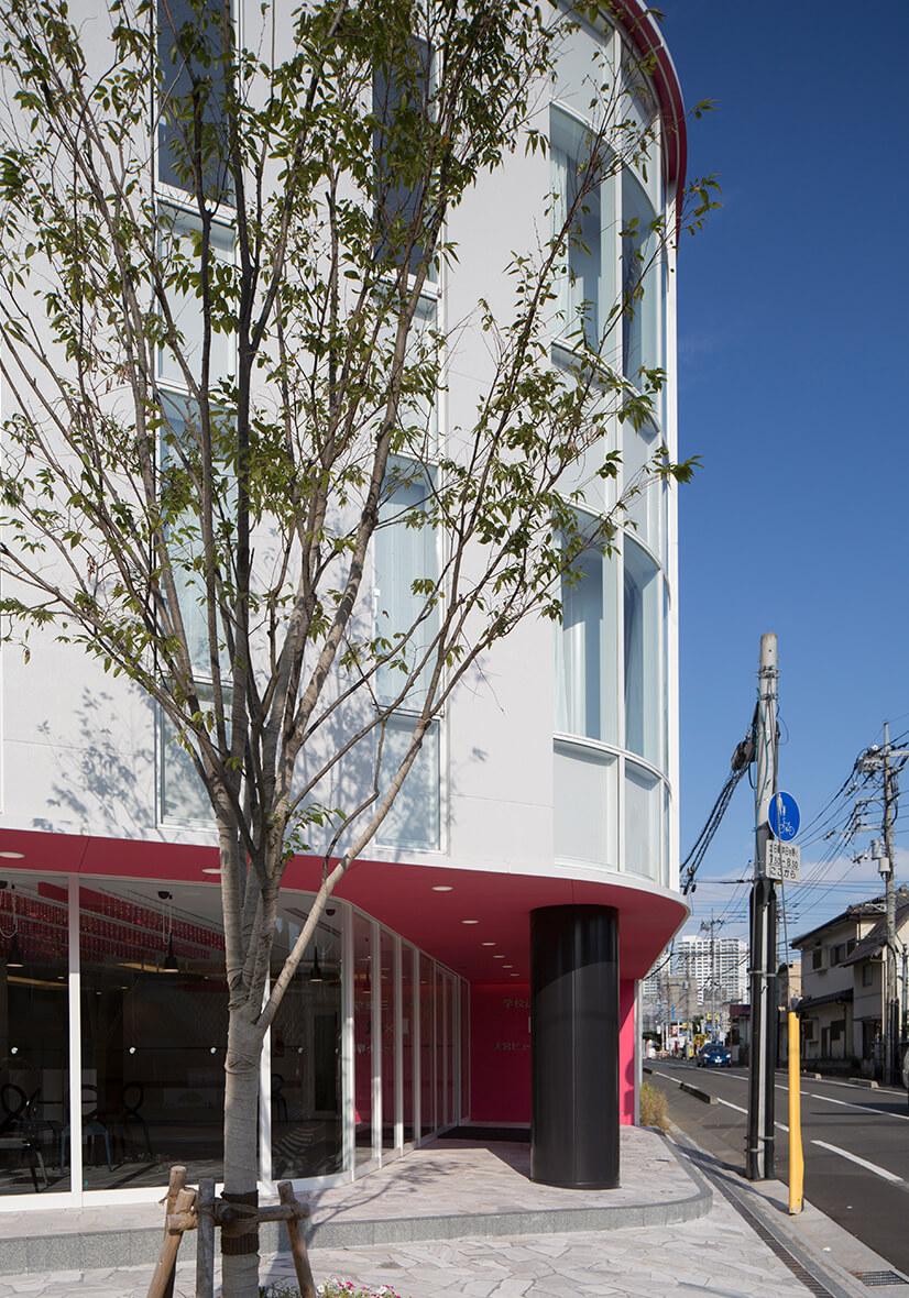 建物入口とシンボルツリー